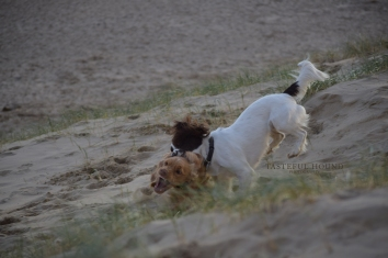 Mia catching Hugo