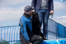 The lovely instructor comforts the frightened flat coat